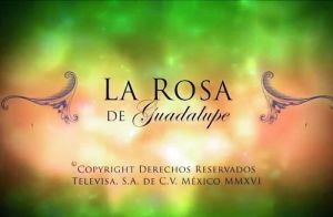 'La Rosa de Guadalupe' de Univision es la reina absoluta de las noches