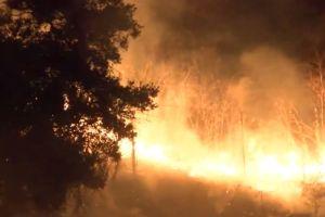 Se clausura autopista 57 en Diamond Bar a causa de incendio forestal