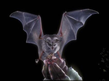 Los murciélagos, una especie incomprendida que brinda grandes beneficios al hombre
