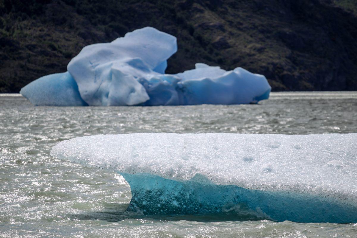 Témpanos producto de la fractura del milenario glaciar Grey.