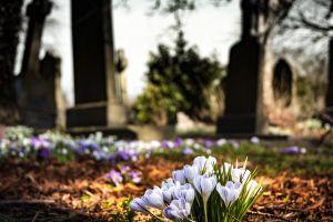 Las 10 principales causas de muerte en el mundo