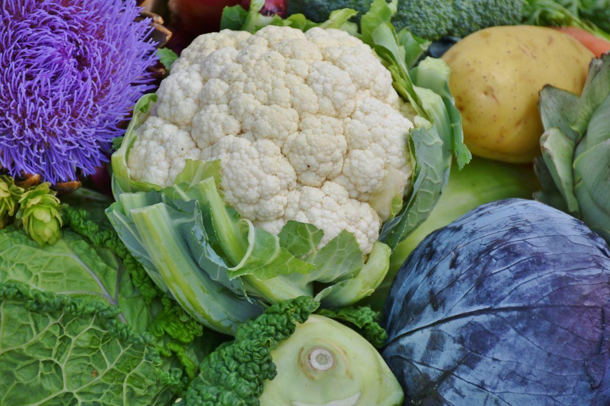 La clorofila de algunos vegetales tiene muchos beneficios para el organismo.
