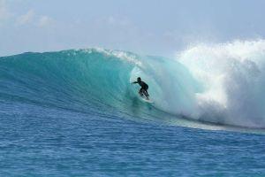 Video de YouTube salva a surfista de ser comido por un tiburón
