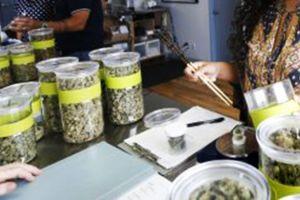 Concejo de Los Ángeles aprueba estrictas medidas para comercio de marihuana