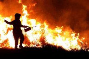 Cinco amigos unen fuerzas para salvar casas de voraz incendio