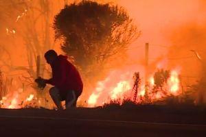 Video: Hombre arriesga la vida para salvar a conejo silvestre de incendio