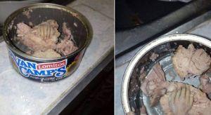 Foto: Abre una lata de atún y encuentra algo asqueroso (y misterioso)