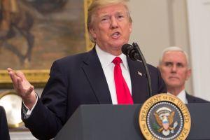 "Donald Trump quiere acabar con este tipo de ""Green Cards"""
