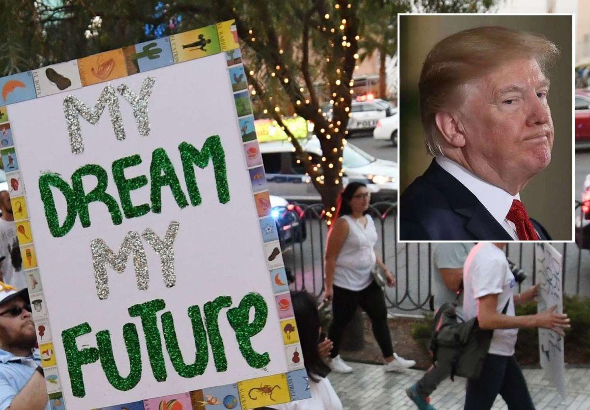"""Los """"Dreamers"""" pueden seguir aplicando por la protección que ofrece DACA."""