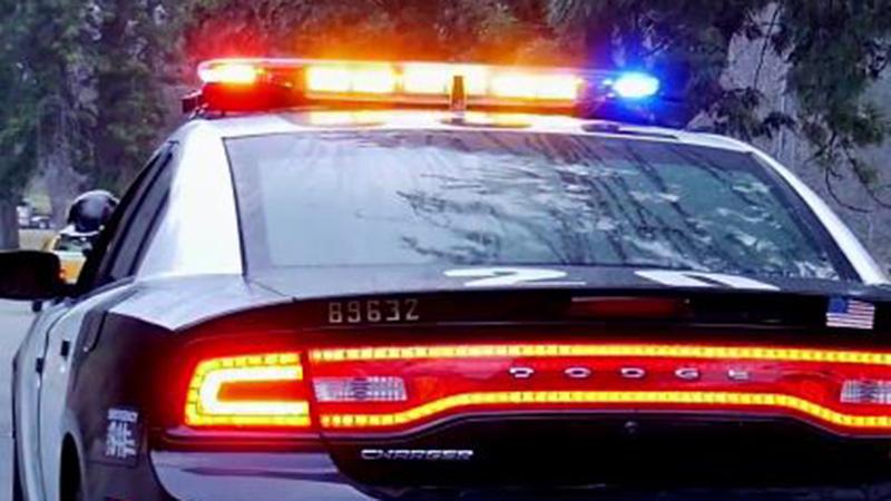 Mira lo que esta patrulla de policía tuvo que hacer para detener a un conductor que lo ignoraba, y por qué