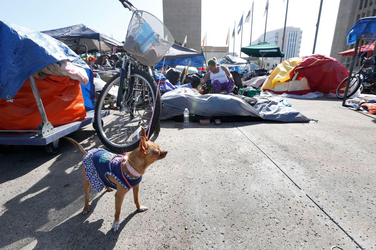 Santa Ana demandará a 33 ciudades del condado de Orange por crisis con desamparados