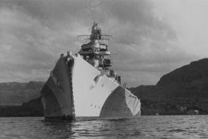 El oculto legado que dejaron los nazis en los árboles de Noruega