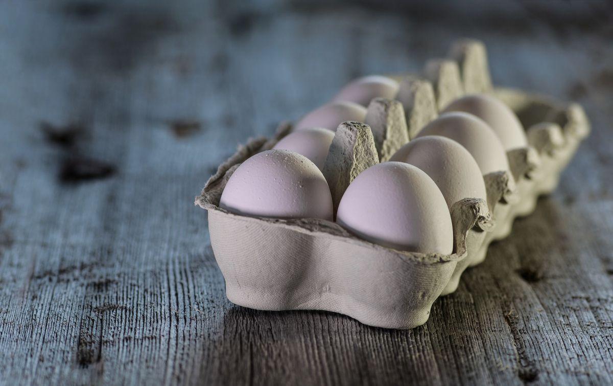 Piden retirar 200 millones de huevos por riesgo de contaminación con salmonella