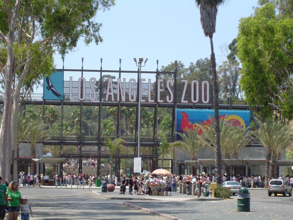 Un pequeño incendio obliga al Zoo de Los Ángeles a evacuar algunos animales
