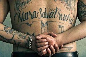 ICE: Miembro de la MS-13 traficaba drogas a Nueva Jersey desde cárcel de California