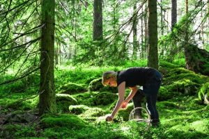 Perdió su anillo hace 47 años en Maine, alguien lo encontró ahora en un bosque de Finlandia