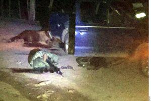 Emboscan y asesinan a tres militares en Guerrero, investigaban homicidio