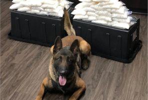 El nuevo perro policía de West Covina detecta 60 libras de metanfetamina