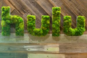 Hulu se prepara para ofrecer contenidos offline