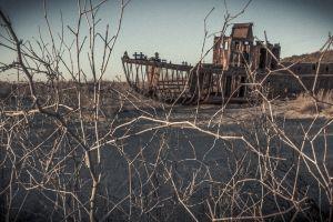 El descomunal proyecto para devolver la vida al mar de Aral que desapareció en Asia