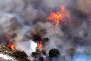 Ordenan evacuar a miles por incendio Aliso en Laguna Beach