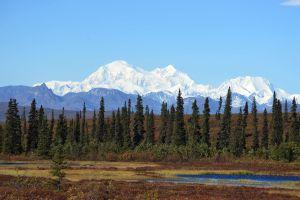 Trump permitirá extraer petróleo en Alaska, los peligros que esto conlleva
