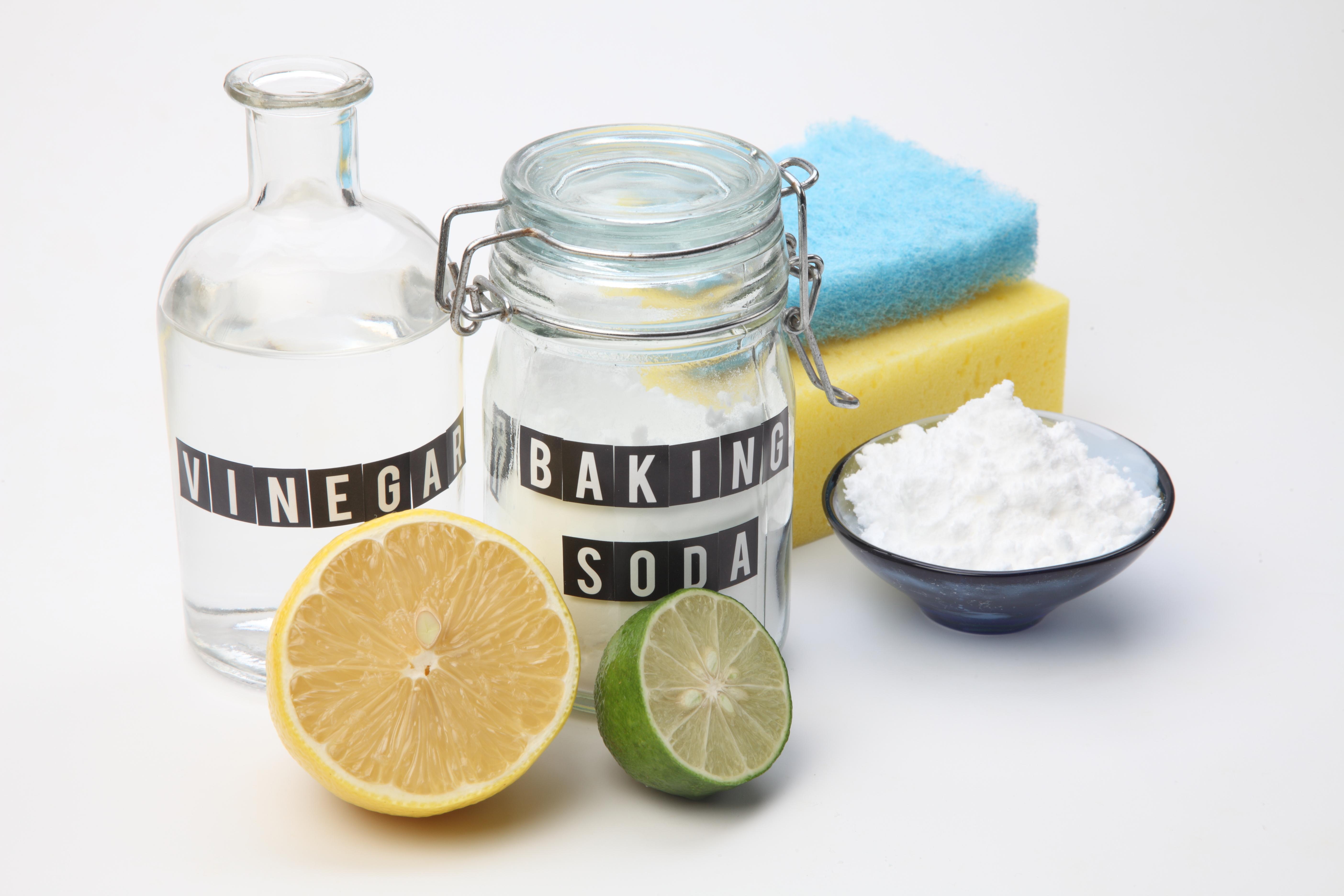 recetas naturales para eliminar el acido urico