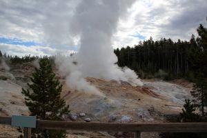 VIDEO: Géiser Steamboat en Yellowstone entra en erupción por octava vez desde marzo