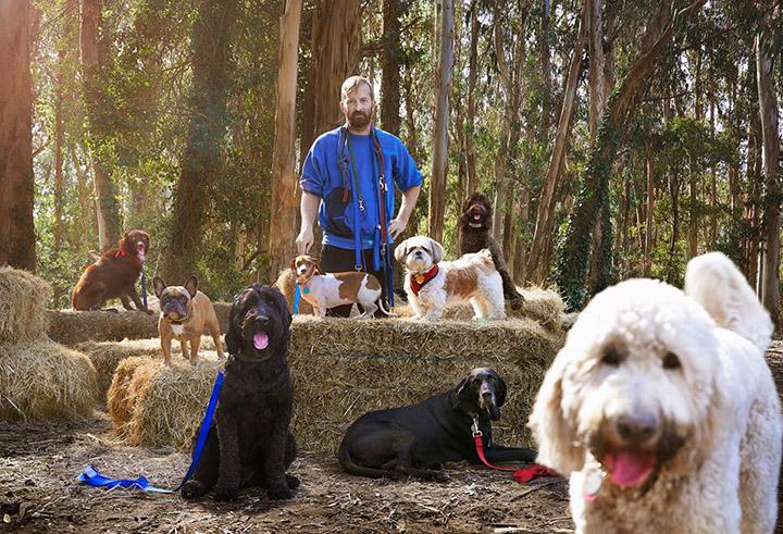 Una persona pierde su trabajo y este paseador de perros recciona así