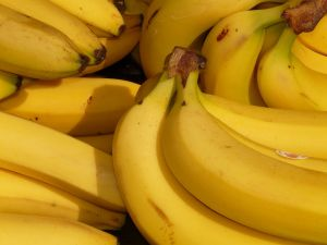 ¿Por qué los plátanos están en peligro de extinción?
