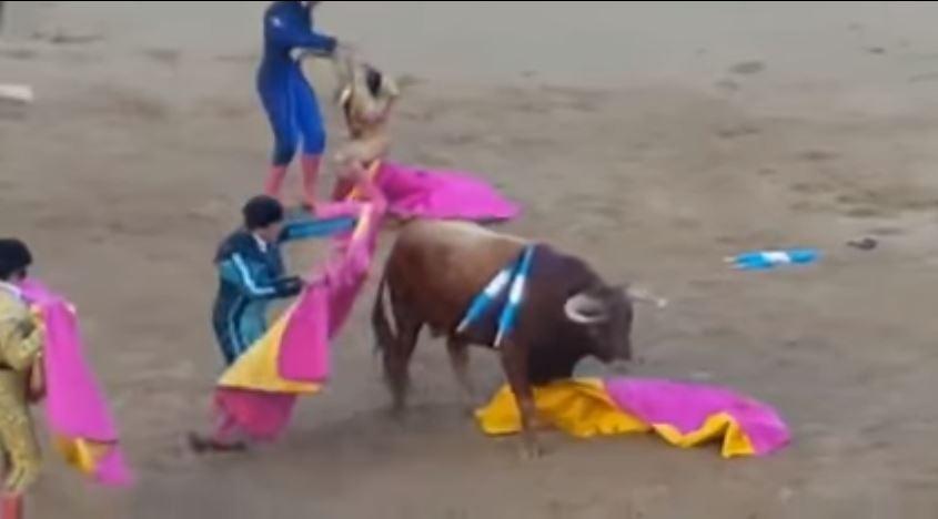 Video: Toro arranca cuero cabelludo a torero tras cornada en la cabeza