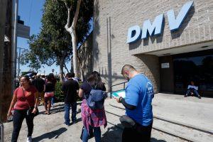 Estado con unos 50,000 indocumentados compartirá información de DMV con el Censo