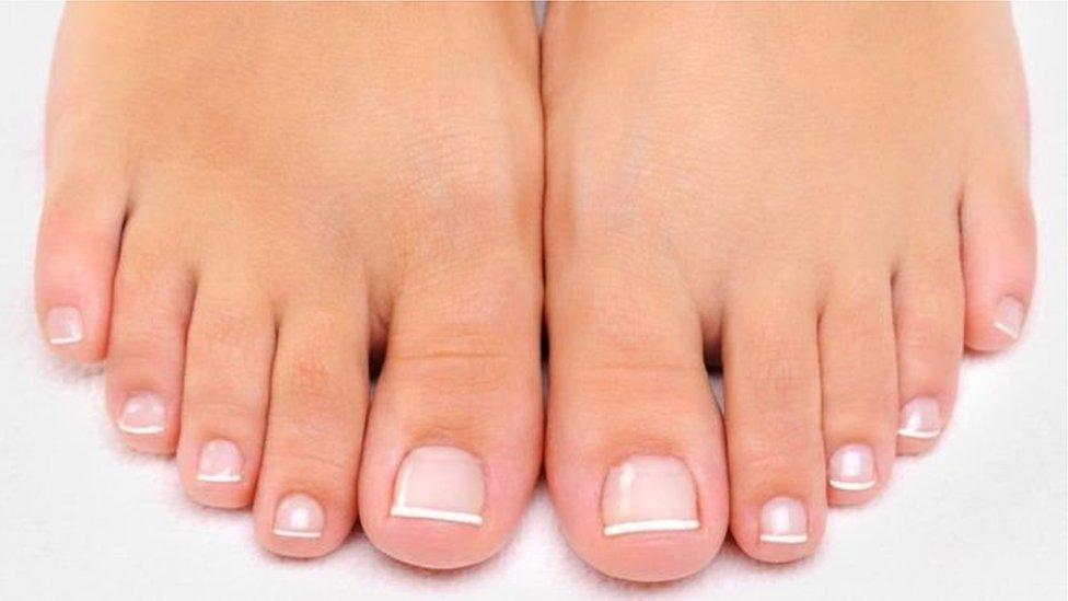 Por qué el dedo gordo del pie fue el último en evolucionar