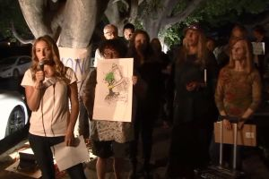 """Debate en torno a los """"peligrosos"""" árboles de Hollywood: ¿cortarlos o salvarlos?"""