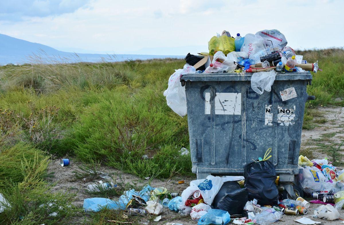 Descubren nuevo efecto negativo del plástico