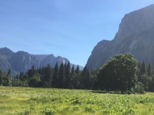 El Parque Nacional de Yosemite ahora requiere reservaciones para visitas debido al COVID-19