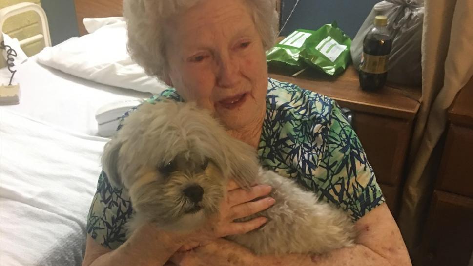 VÍDEO: Una familia sorprende a la abuela con un regalo que consigue emocionarla
