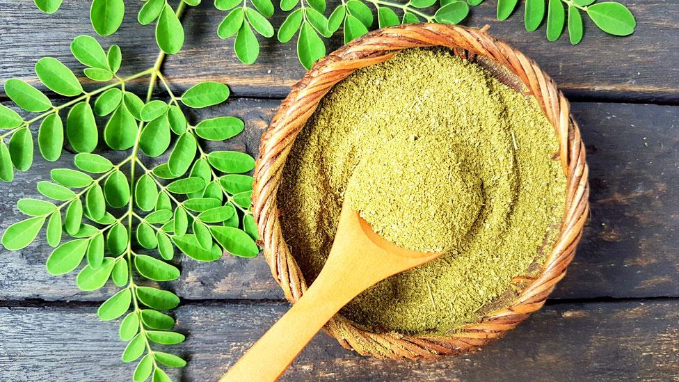 Moringa y otros cultivos altamente nutritivos que pueden revolucionar nuestra dieta