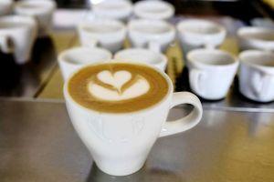 Coca-Colaapuesta por el café  y competirá con Starbucks
