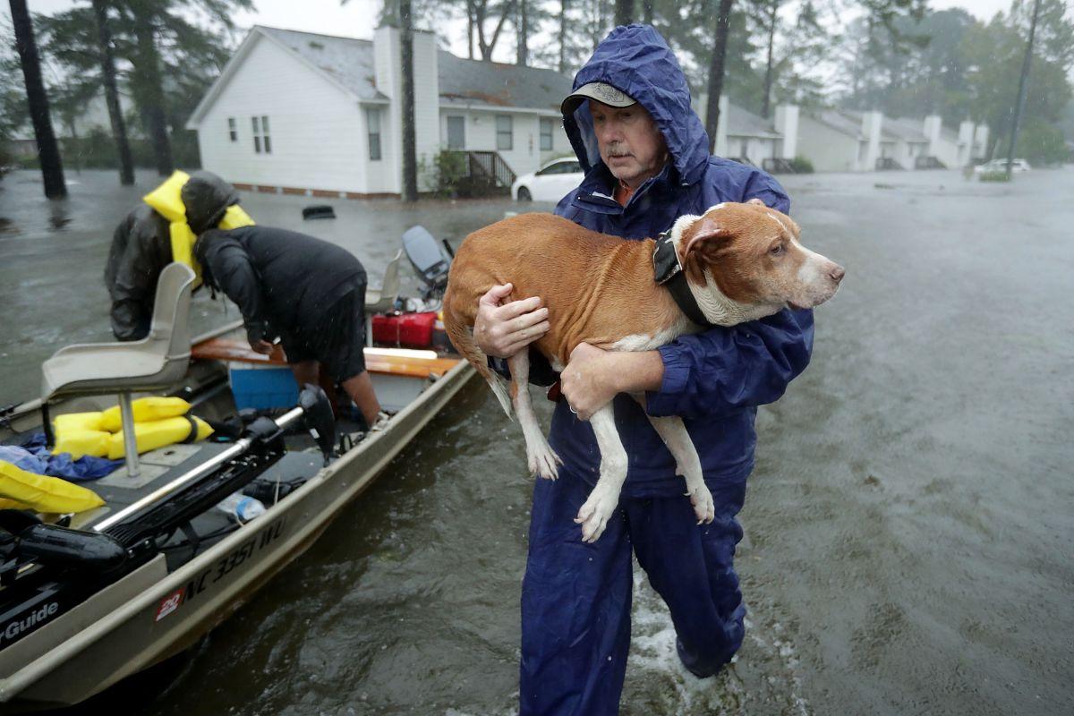 """Florence deja 11 muertos y lluvias """"épicas"""" que desbordan grandes ríos en la costa este de EEUU"""