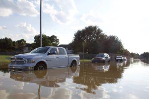 ¿Vale la pena comprar un auto usado que hubiera sufrido una inundación?