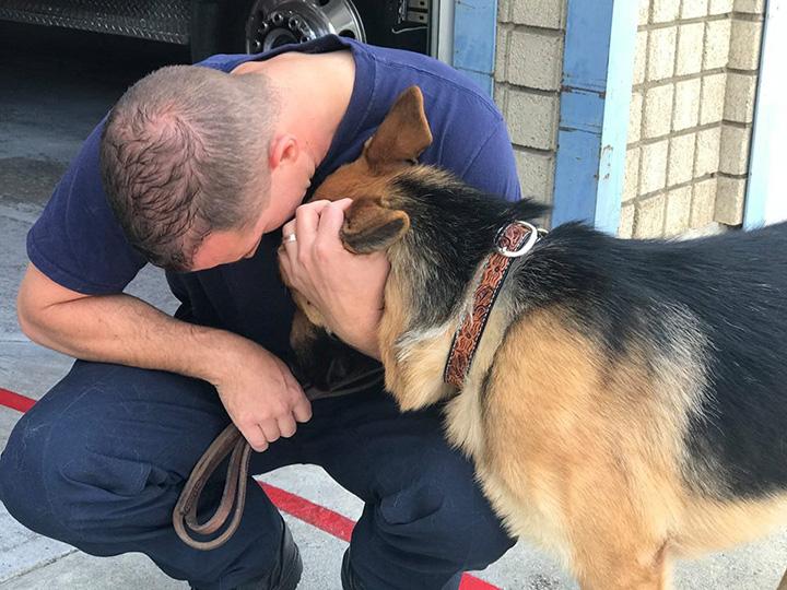 Un bombero adopta un perro que encontró en los incendios de California