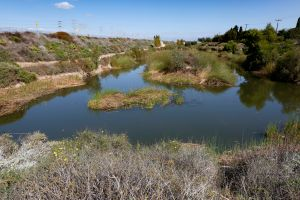 Revitalizando el río Los Ángeles