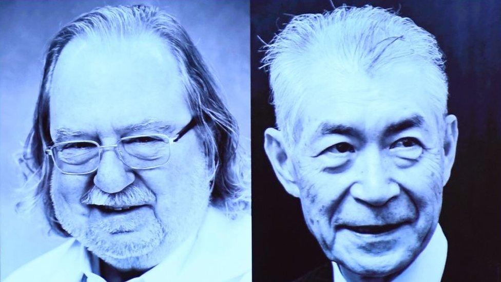 Nobel de Medicina: James P. Allison y Tasuku Honjo descubren cómo usar nuestras células para combatir el cáncer