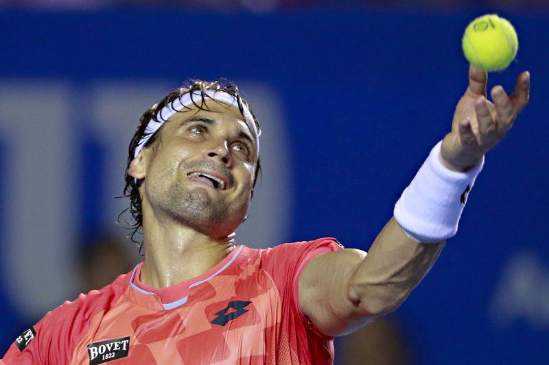 """David Ferrer le tira a Serena Williams: """"Eso fue demagogia. No hay machismo en el tenis"""""""