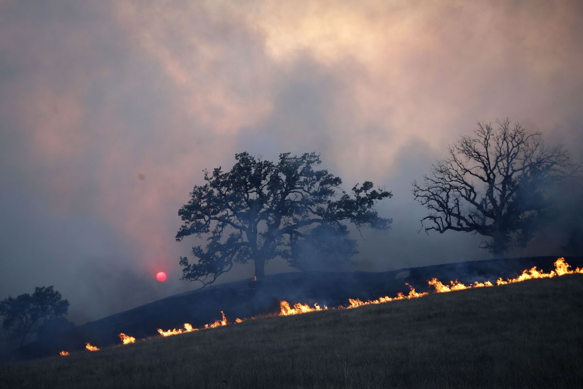 Más de 30 muertes en los 3 grandes incendios en California.