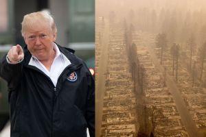 Gobierno Trump sigue atacando a California, ahora culpa a grupos ambientalistas de los incendios