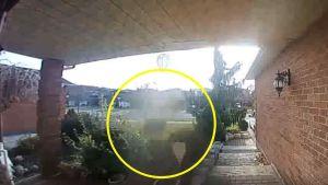 Mujer capta figura fantasmal en el patio de su casa y aseguran que es un visitante del más allá