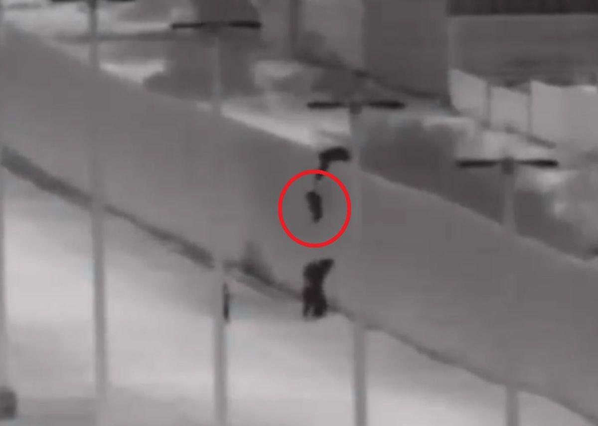 Video muestra a sujeto aventando niños por el muro fronterizo