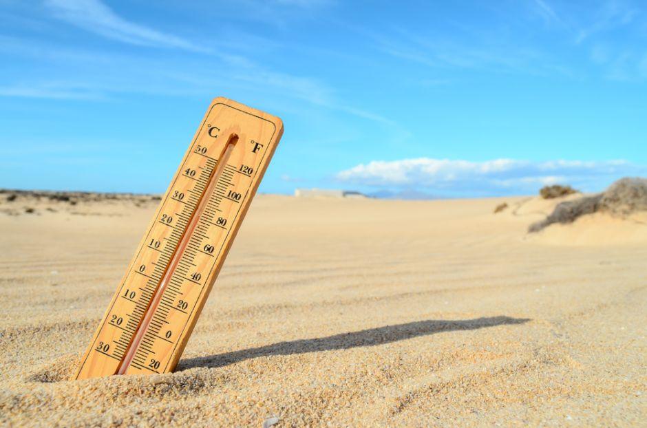 En 2030 tendremos un clima similar al que se vivió hace 3 millones de años, advierten expertos